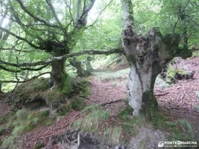 Parque Natural de Urkiola;viajes tajo cañon de caracena rutas de senderismo en huelva senderismo cu